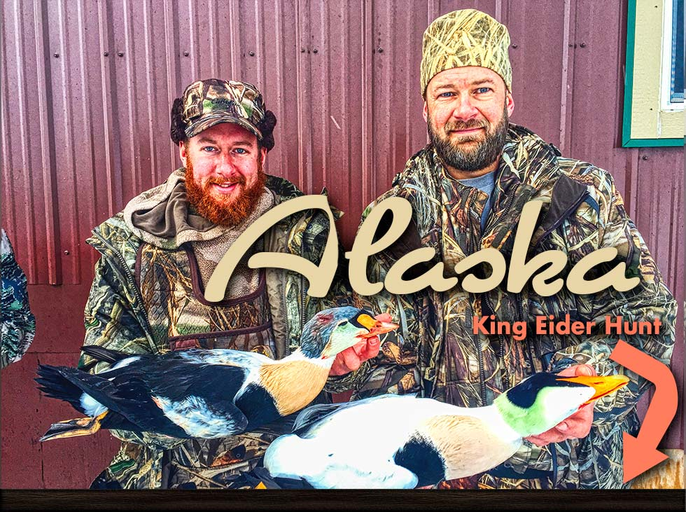 Alaska King Eider Outfitter |  Happy hunters with their King Eiders